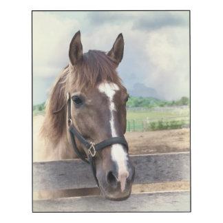Brown Horse in Paddock Wood Wall Art