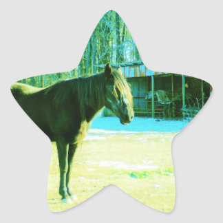 Brown horse in snow by barn star sticker
