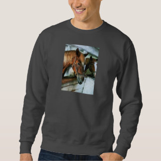 Brown Horse in Stall Pull Over Sweatshirts