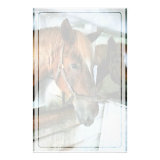 Brown Horse in Stall Stationery