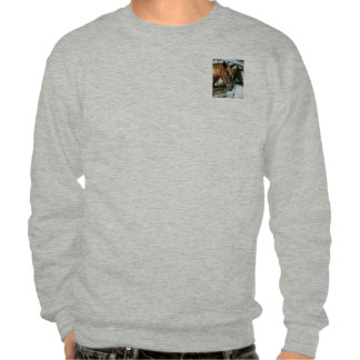 Brown Horse in Stall Pullover Sweatshirts