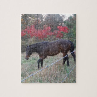 Brown horse in the red autumn trees jigsaw puzzles