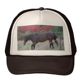 Brown horse in the red autumn trees trucker hat