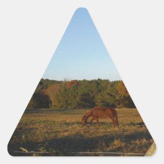 Brown horse in  the Sun Triangle Sticker