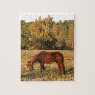 Brown horse in yellow tree field puzzle