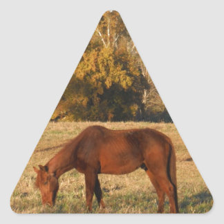 Brown horse in  yellow tree field triangle sticker