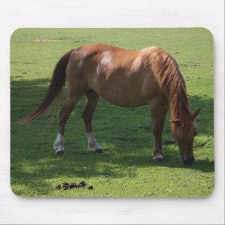 Brown horse mousepad