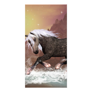 Brown horse photo card