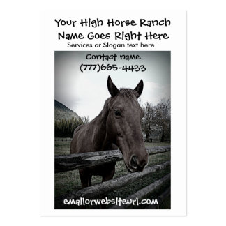 Brown Horse Photographic Portrait Business Cards
