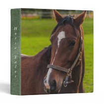 Brown Horse Portrait 3 Ring Binder