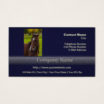 Brown Horse Portrait Business Card