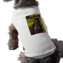 Brown Horse Portrait T-Shirt
