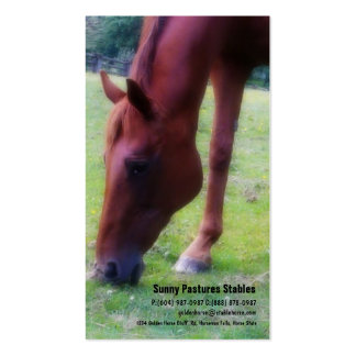 Brown Horse Riding Stables Boarding or Farrier Double-Sided Standard Business Cards (Pack Of 100)