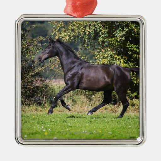 brown horse running on meadow metal ornament