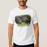 brown horse running on meadow t shirt
