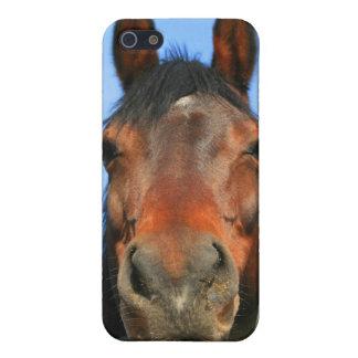 Brown Horse Speck Case