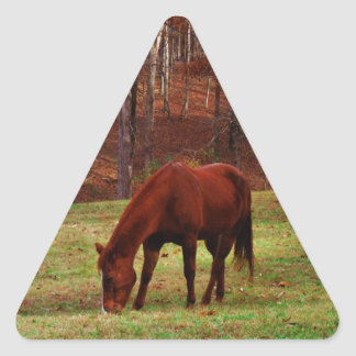 Brown Horse w/ White Nose at Woods Edge Triangle Sticker