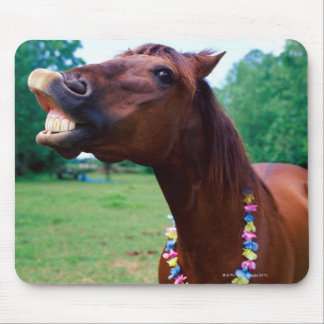 Brown horse wearing necklace, baring teeth, mouse pad