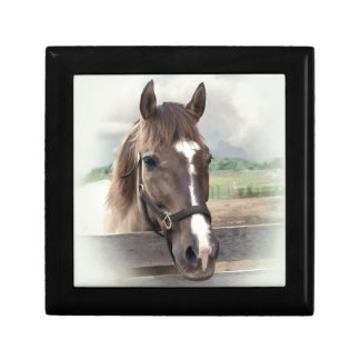 Brown Horse with Bridle Jewelry Box