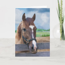 Brown Horse with Bridle Note or Greeting Card