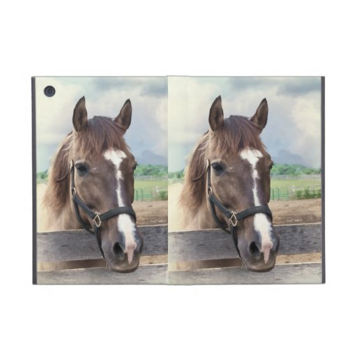 Brown Horse with Bridle Powis  iPad Mini Case