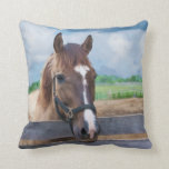 "Brown Horse with Bridle Throw Pillow<br><div class=""desc"">A brown horse with a white streak on his face stands in the paddock on this colorful  animal-lover&#39;s throw pillow.  Customize it with your own caption.</div>"