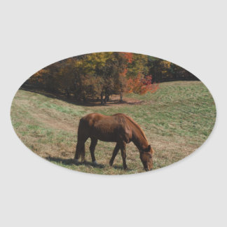 Brown horse with fall trees oval sticker