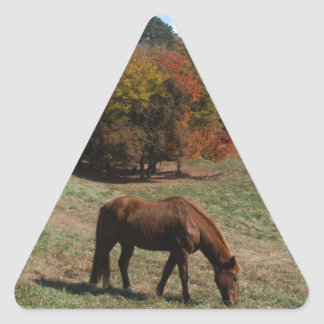 Brown horse with fall trees triangle sticker