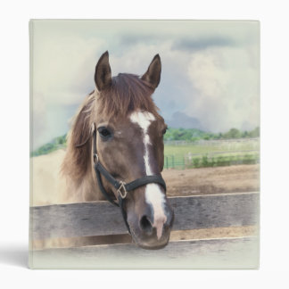 Brown Horse with Halter 3 Ring Binders