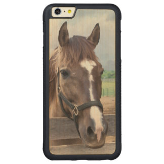Brown Horse with Halter Carved® Maple iPhone 6 Plus Bumper
