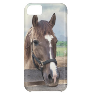 Brown Horse with Halter Customizable Case For iPhone 5C