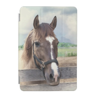 Brown Horse with Halter iPad Mini Cover