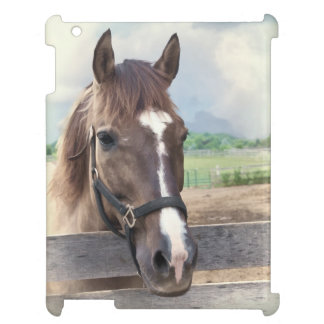 Brown Horse with Halter Case For The iPad 2 3 4