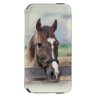 Brown Horse with Halter iPhone 6/6s Wallet Case