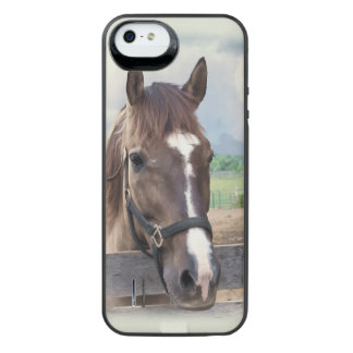 Brown Horse with Halter iPhone SE/5/5s Battery Case
