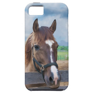 Brown Horse with Halter iPhone SE/5/5s Case
