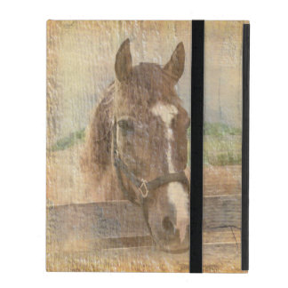 Brown Horse with Halter on Old Wood iPad Folio Case