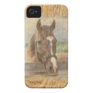 Brown Horse with Halter on Old Wood iPhone 4 Case