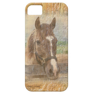 Brown Horse with Halter on Old Wood iPhone SE/5/5s Case
