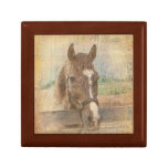 Brown Horse with Halter on Old Wood Keepsake Boxes
