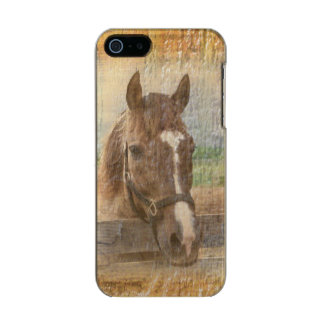 Brown Horse with Halter on Old Wood Metallic Phone Case For iPhone SE/5/5s