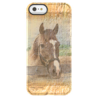 Brown Horse with Halter on Old Wood Permafrost® iPhone SE/5/5s Case