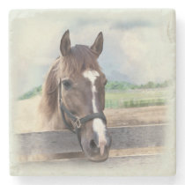 Brown Horse with Halter Stone Coaster