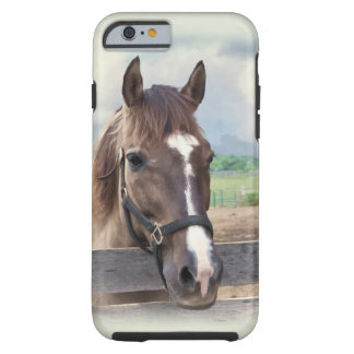 Brown Horse with Halter Tough iPhone 6 Case