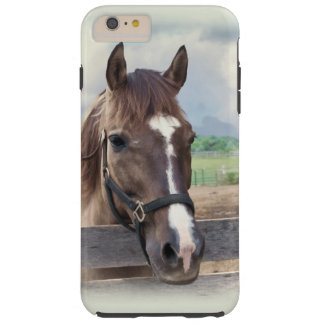 Brown Horse with Halter Tough iPhone 6 Plus Case