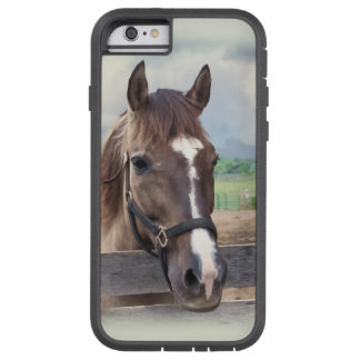 Brown Horse with Halter Tough Xtreme iPhone 6 Case