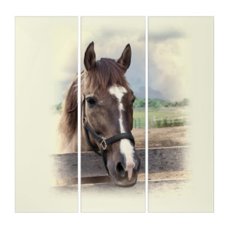 Brown Horse with Halter Triptych