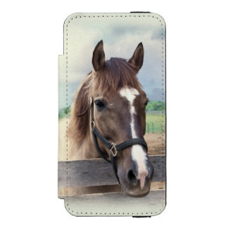 Brown Horse with Halter Wallet Case For iPhone SE/5/5s
