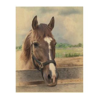 Brown Horse with Halter Wood Canvases