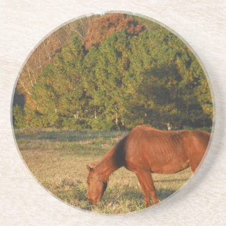 Brown Horse with Pine Trees Sandstone Coaster